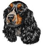 English Cocker Spaniel 9
